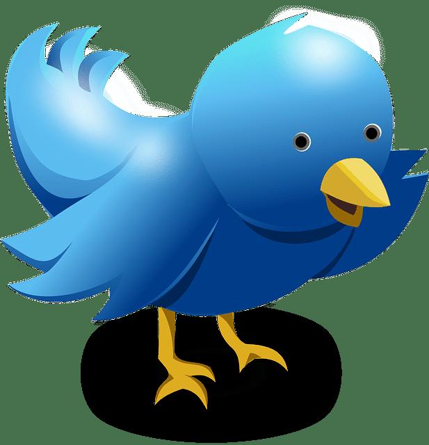En Twitter los mensajes vuelan rápido! Debes publicar varios tweets al día para que tus usuarios te sientan!